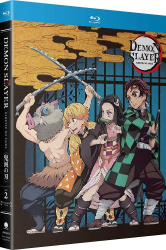 Demon Slayer: Kimetsu No Yaiba: Vol.2